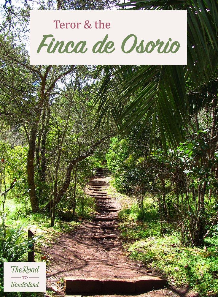 Teror & the Finca de Osorio Pin