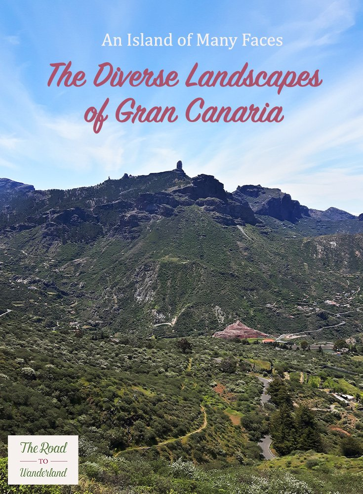 The Diverse Landscapes of Gran Canaria Pin