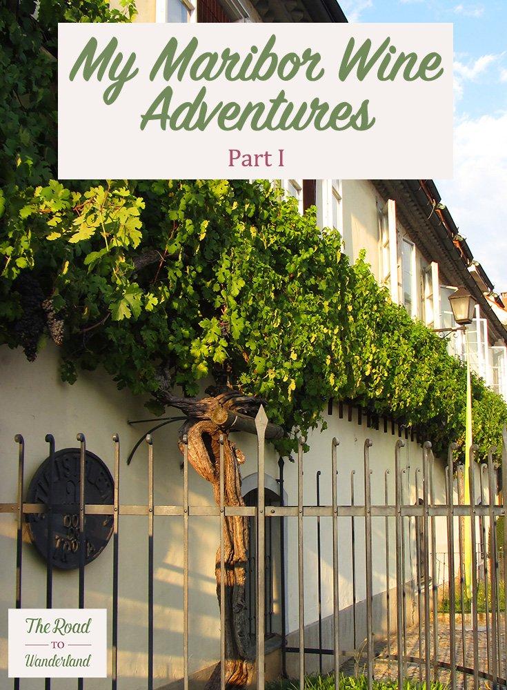 Maribor Wine Adventures I Pin