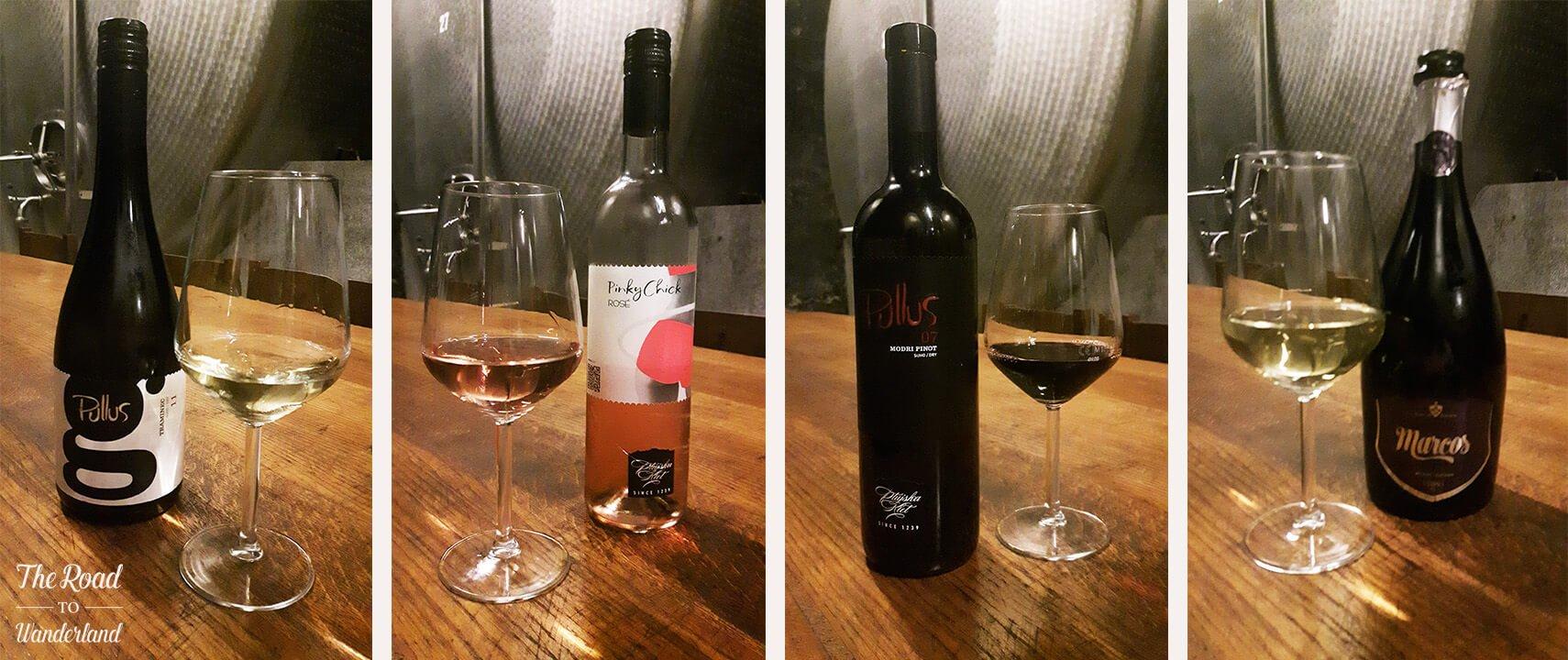Wine tasting in the Vinag wine cellar