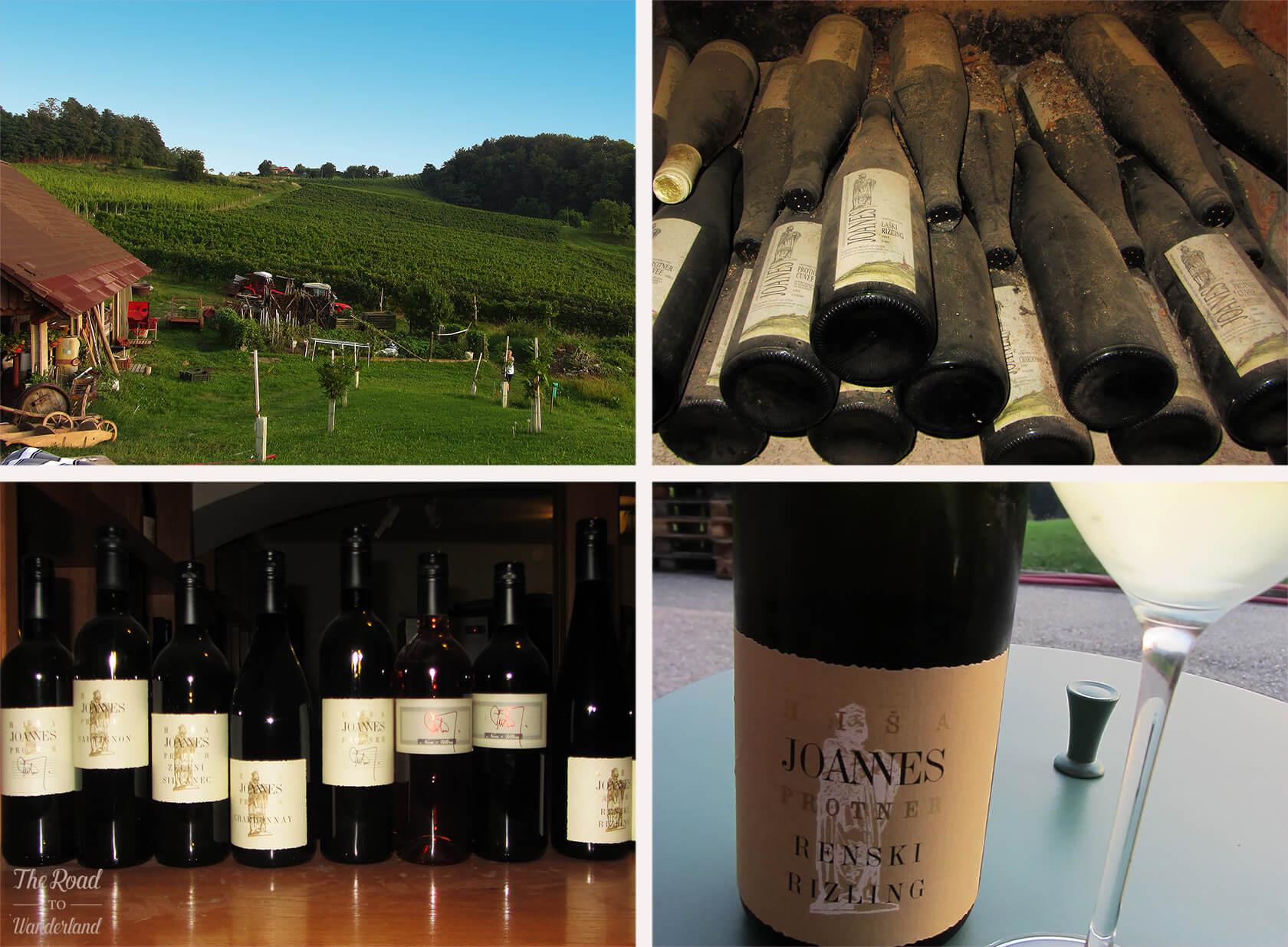 Hiša Joannes Protner wine tasting