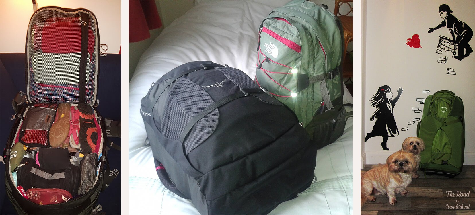 My digital nomad luggage