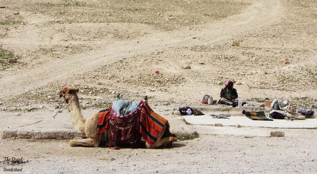 Camel and hawker at the entrance to the Wadi Qelt Valley