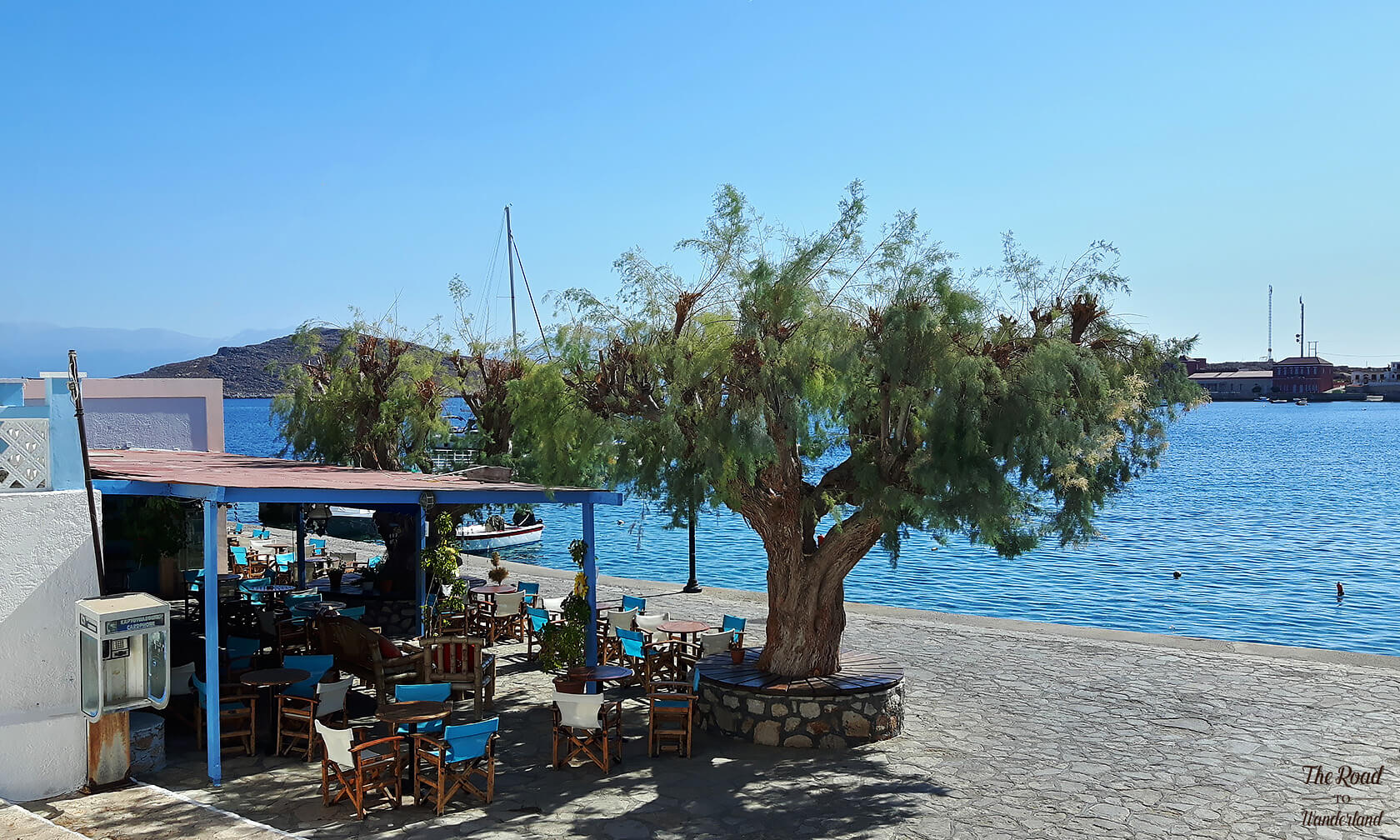 Tree and empty taverna