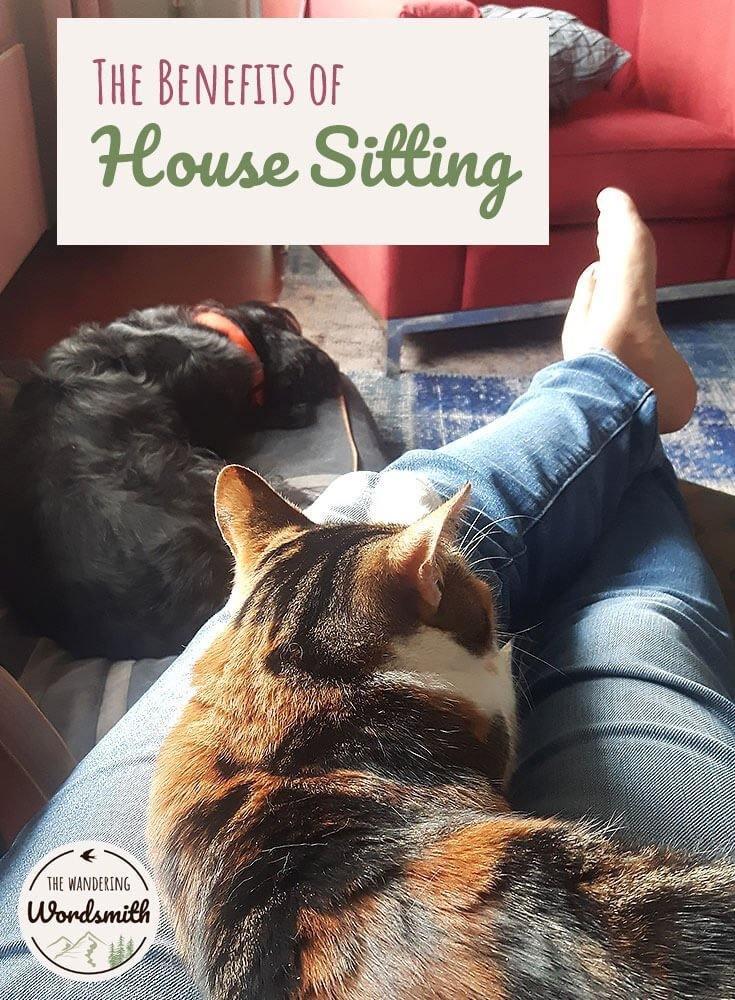 The Benefits of House Sitting Pinterest image
